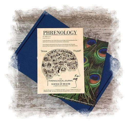 Book Subscription Box - Crime Mystery - November 2018 - Phrenology Print