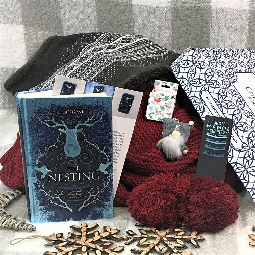 Monthly crime & mystery box December 2020 The Nesting CJ Cooke